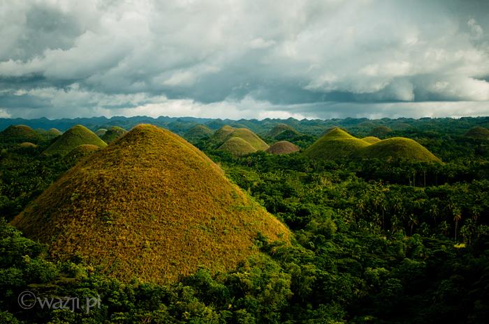 Filipiny_Bohol_Czekoladowe_Wzgórza, DSC_5773