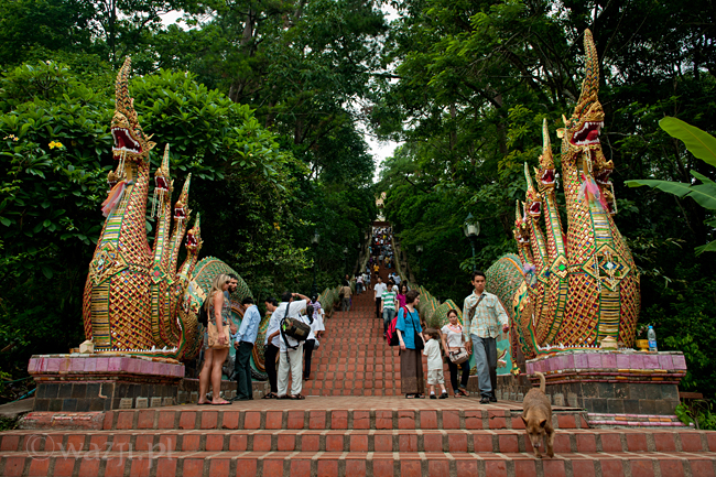 Tajlandia, Chiang Mai. Wat Prathat Doi Suthep, DSC_8499
