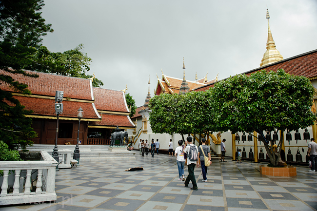 Tajlandia, Chiang Mai. Wat Prathat Doi Suthep, DSC_8621