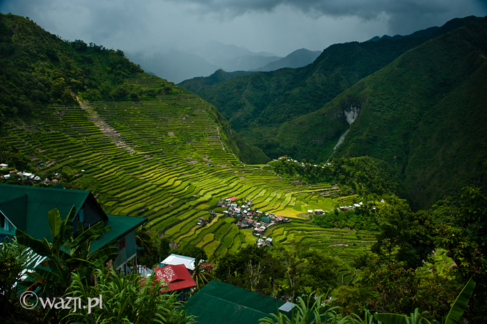 Filipiny_Batad_pola ryżowe, DSC_9835