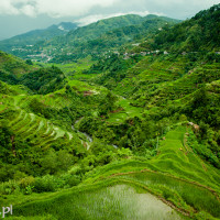Filipiny_Banaue_tarasy_ryżowe, DSC_9876