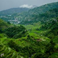 Filipiny_Banaue_tarasy_ryżowe, DSC_9895
