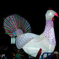 Vietnam_Mid_Autumn_Festival, DSC_8141