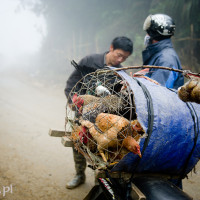 Wietnam_Sapa_Cao_Son_market, DSC_4110