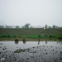 Wietnam_Ninh_Binh_na_wsi, DSC_4381