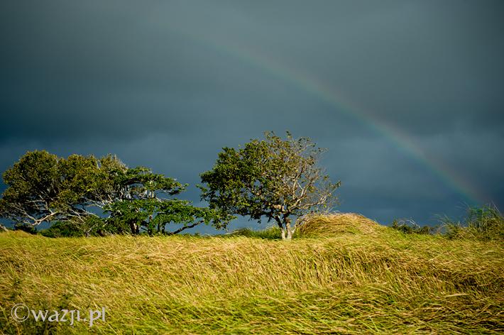 Filipiny_Ilocos_Norte, DSC_5809