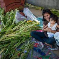 Filipiny_Niedziela_Palmowa, DSC_3213