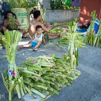 Filipiny_Niedziela_Palmowa, DSC_3220