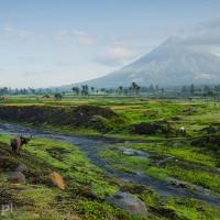 Filipiny_wulkan_Mayon, DSC_5170