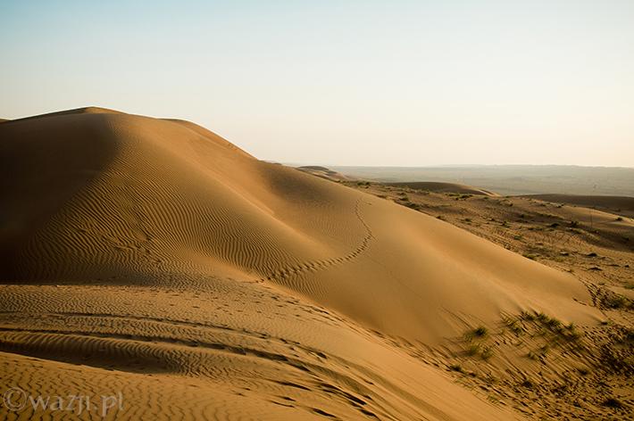 Oman_Wahiba_Sands_pustynia, DSC_8631