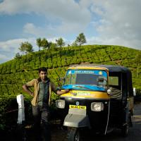Indie_Kerala_Munnar_plantacje_herbaty, DSC_3943