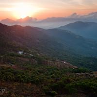 Indie_Kerala_Munnar_plantacje_herbaty, DSC_4149