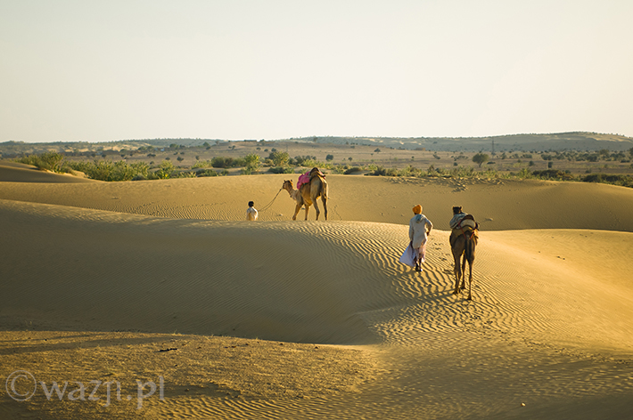Indie_Rajasthan_Jailsamer_Pustynia_Thar, DSC_0361