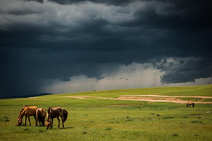 mongolia centralna-5