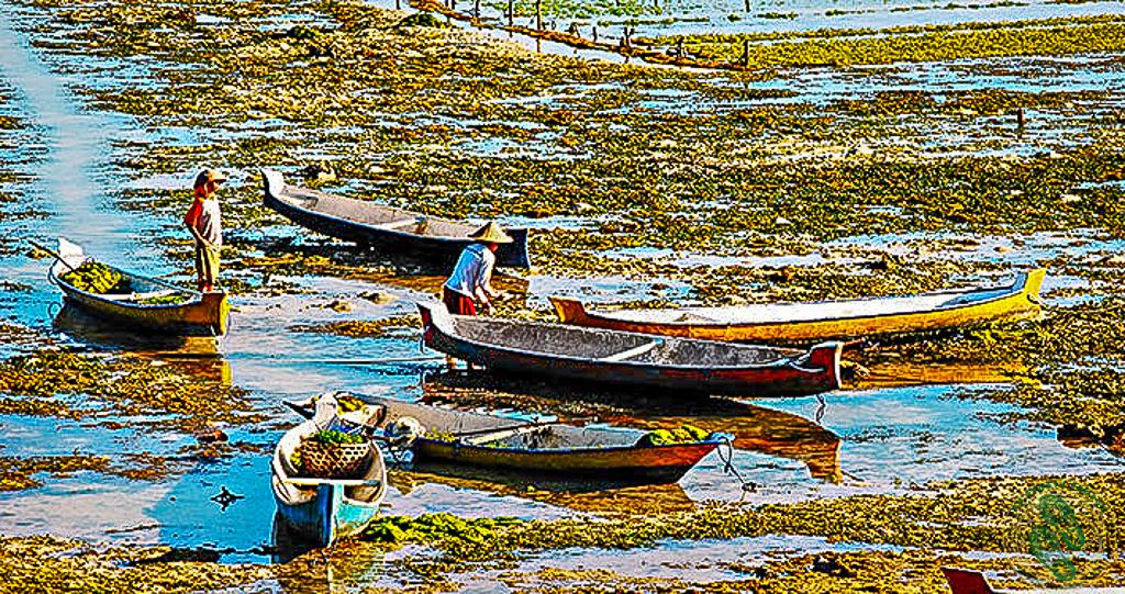Nusa Lembongan łódki-2