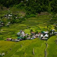 Filipiny_Batad_pola ryżowe, DSC_9732