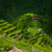 Filipiny_Batad, DSC_9801