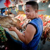 Filipiny_dampa_owoce_morza_ryby, DSC_4259