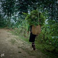 Vietnam_Sapa_Black_Hmong, DSC_0562