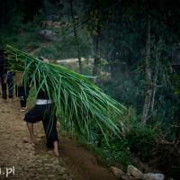 Vietnam_Sapa_Black_Hmong, DSC_0615