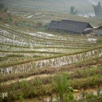 Vietnam_Sapa_Black_Hmong, DSC_0895