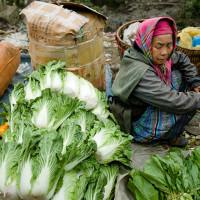 Wietnam_Sapa_Cao_Son_market, DSC_4158