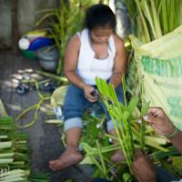 Filipiny_Niedziela_Palmowa, DSC_3174