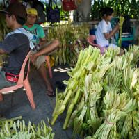 Filipiny_Niedziela_Palmowa, DSC_3211