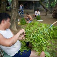 Filipiny_Wielkanoc_biczownicy_z_Infanty, DSC_3809