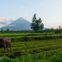 Filipiny_wulkan_Mayon, DSC_5121