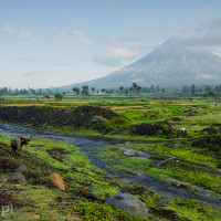 Filipiny_wulkan_Mayon, DSC_5170