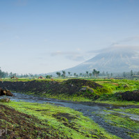 Filipiny_wulkan_Mayon, DSC_5194