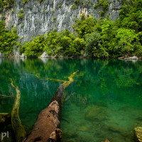 Filipiny_Caramoan, DSC_5496