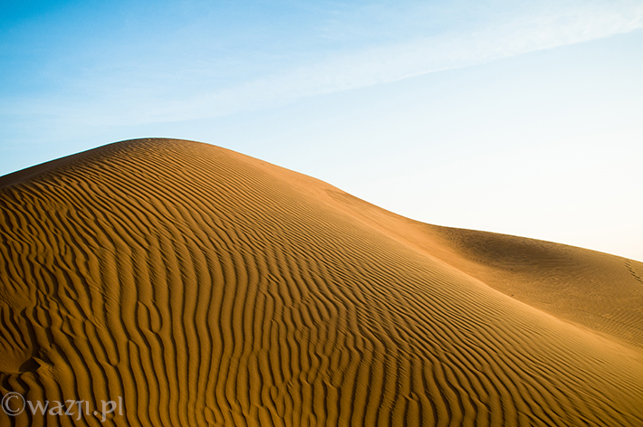 Oman_Wahiba_Sands_pustynia, DSC_8634