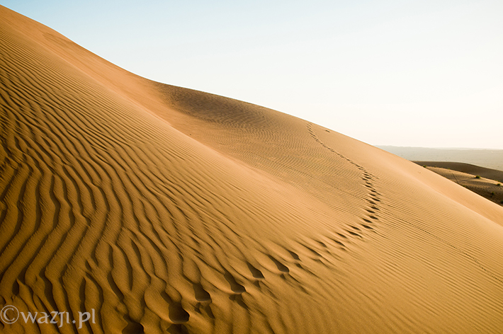 Oman_Wahiba_Sands_pustynia, DSC_8638