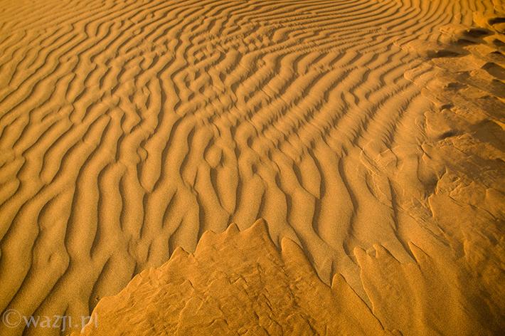 Oman_Wahiba_Sands_pustynia, DSC_8646