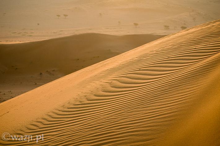 Wzorki na piasku