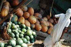 Indie_Kolkata_WywiadIndie02