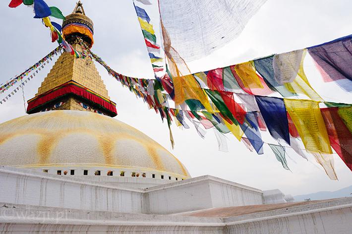 Nepal_Katmandu_Boudhanath, DSC_8977