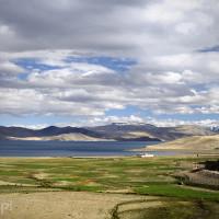 Indie_Ladakh_Tso_Moriri, DSC_4584