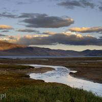 Indie_Ladakh_Tso_Moriri, DSC_4630