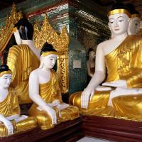 Birma_Yangon_Shwedagon_Paya, DSC_9838