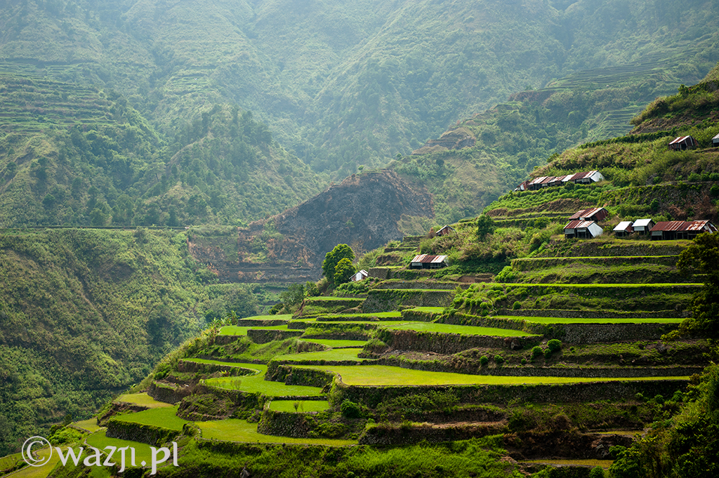 3. Filipiny, Kalinga. Spichlerze w wiosce Buscalan, a w tle góry Kalingi. (kwiecień 2014)