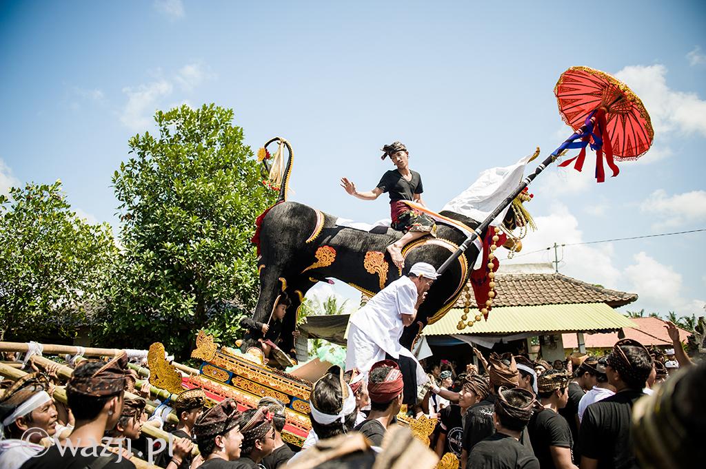 9. Indonezja, Bali. Procesja podczas wielkiej  zbiorowej kremacji w okolicach Ubud. (lipiec 2014)