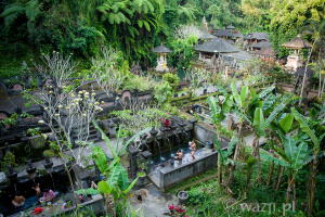 Zgubić się na Bali. Gunung Kawi Sebatu.