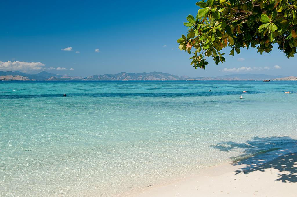 Kanawa - dobre miejsce na nawet kilkudniowy relaks + rafy, a nawet rekiny. Takie małe tylko.
