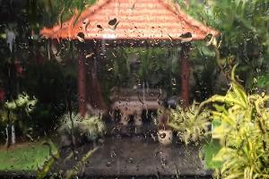 Po czym poznasz, że pora deszczowa na Bali trwa za długo ☔️☔️☔️